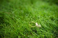 Close-up das alianças de casamento na grama Fotos de Stock