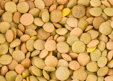Close up das lentilhas Foto de Stock Royalty Free