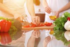 Close up das mãos humanas que cozinham na cozinha Mãe e filha ou dois amigos fêmeas que cortam vegetais para a salada fresca Imagens de Stock Royalty Free