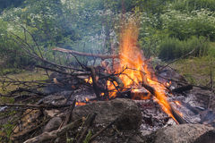 Close-up das madeiras da fogueira Imagem de Stock Royalty Free
