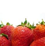 Close-up das morangos Foto de Stock Royalty Free