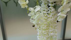 Close-up das orquídeas brancas na decoração do casamento Arco do casamento com flores brancas vídeos de arquivo