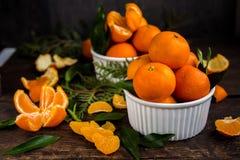 Close up das tangerinas dos mandarino Fotografia de Stock Royalty Free