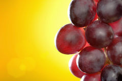 Close-up das uvas vermelhas Fotos de Stock Royalty Free