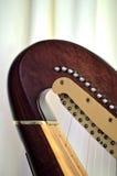 Close up de ajustamento dos mecanismos do pescoço da harpa do pedal Foto de Stock Royalty Free