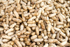 Close-up de alguns amendoins Fotografia de Stock Royalty Free