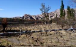 Close up de Barbwire - RN40/estrada nacional 40 foto de stock royalty free