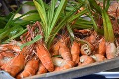 Close up de camarões deliciosos do rei em um mercado local do chatuchak do mercado do alimento da rua em Tailândia, Ásia Foto de Stock