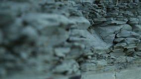 Close-up de Cliff Texture de pedra Landform de pedra Cliff Levels video estoque