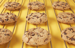 Close up de cookies do chocolate Foto de Stock