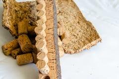 Close-up de Cork Bark Ready terminado para fabricar na cortiça foto de stock