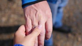 Close up de dois amantes que juntam-se às mãos A silhueta do detalhe da terra arrendada do homem e da mulher cede Conceito do amo vídeos de arquivo
