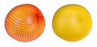 Close-up de dois pomelos Grandis do citrino imagem de stock royalty free