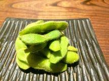 Close up de Edamame, feijões de soja em uma placa imagem de stock royalty free