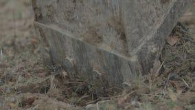 Close up de escavação da cubeta video estoque