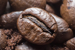 Close up de feijões de café Foto de Stock Royalty Free