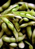 Close up de feijões do adame Fotografia de Stock