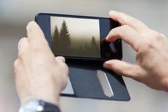 Close up de fotografar a natureza com telefone esperto fotos de stock royalty free