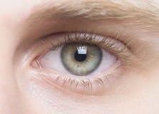Close up de Goregeous disparado dos olhos humanos Imagem de Stock