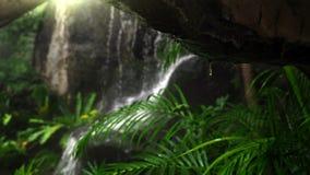 Close up de gotas da água debaixo da caverna com fundo do borrão da cachoeira da floresta úmida Foco selecionado fotografia de stock royalty free