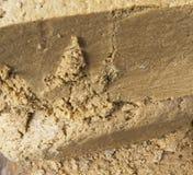 Close-up de Halva Imagem de Stock Royalty Free