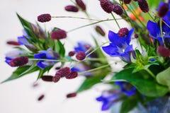 Close up de Ikebana Imagem de Stock