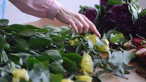 Close-up: de mooie gele bloemen van de bloemisttelling - eustoms De winkel van de bloem royalty-vrije stock foto's