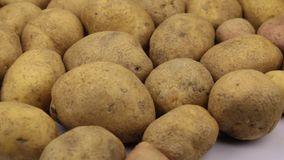Close-up De omwenteling van de achtergrond maakte van aardappels stock footage