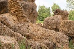 Close-up de pacotes de feno em uma vila Pilhas secas do feno na cena rural Fotos de Stock Royalty Free
