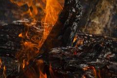 Close-up de queimadura da lenha com fogo alaranjado imagens de stock royalty free