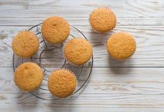 Close-up de queques cozidos deliciosos Fotografia de Stock
