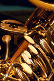 Close up de Saxy fotografia de stock