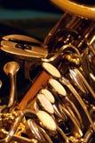 Close up de Saxy Fotografia de Stock