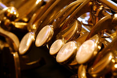 Close up de Saxy fotografia de stock royalty free
