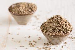 Close up de sementes dos anis Foto de Stock Royalty Free