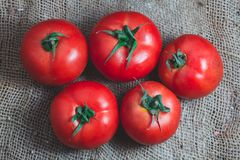 Close-up de tomates frescos Imagem de Stock Royalty Free