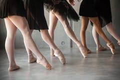 Close-up de um bailado novo fotografia de stock