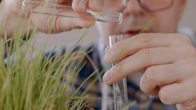 Close-up de um cientista masculino em um laboratório que derrama o líquido claro em um tubo de ensaio ao lado de uma grama verde  video estoque