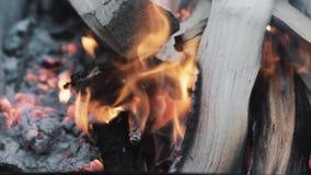 Close-up de um fogo que queima-se no soldador video estoque