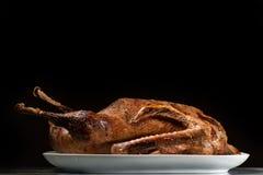 Close up de um ganso roasted em uma placa branca fotografia de stock royalty free