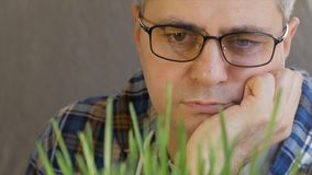 Close-up de um homem de meia idade com vidros, inclinando-se em sua mão que olha os brotos da grama verde filme
