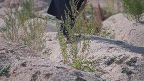 Close-up de um homem resistente misterioso em um casaco preto que anda através do deserto Seus pés estão na terra seca, rochos video estoque