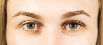 Close-up de um olho do ` s da menina com chicotes O conceito do inquietação com os olhos, extensões da pestana no salão de beleza fotografia de stock