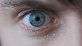 Close-up de um olho masculino do ` s O aluno reduz no movimento lento video estoque