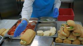 Close-up de um panini do vegetariano com tomates e mussarela Foco seletivo A cozinha, o painel recolhe o panini filme