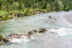 Close-up de um rio de fluxo fotos de stock royalty free