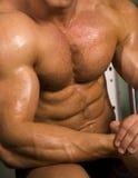 Close-up de um torso atlético Fotografia de Stock Royalty Free