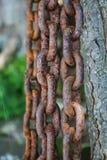 Close up de uma corrente oxidada do metal Imagem de Stock