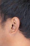 Close up de uma orelha humana asiática Imagem de Stock