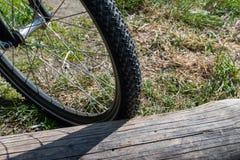 Close-up de uma roda de bicicleta estacionada por um log grande velho fotografia de stock